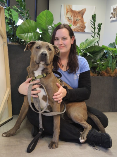 Nikki W. - Northwest Animal Hospital