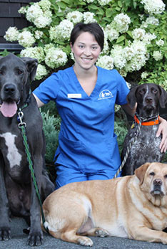 Ga-Wing - Northwest Animal Hospital